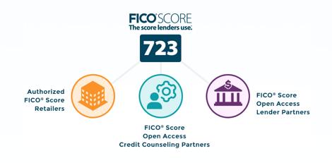 Screenshot of the FICO Website
