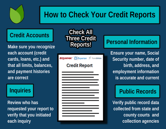 Credit Report Evaluation Infographic
