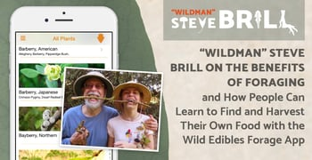Wildman Steve Brill On The Benefits Of Foraging
