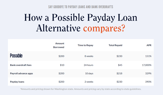 Screenshot of Possible Payday Loan Example