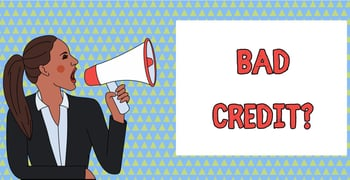 Bad Credit Statistics