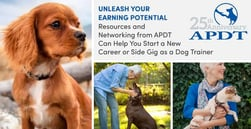 Unleash Your Earning Potential — Resources and Networking from APDT Can Help You Start a New Career or Side Gig as a Dog Trainer