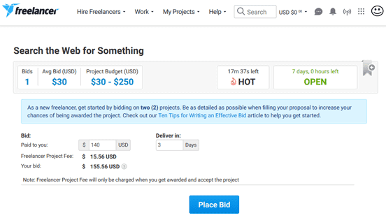 Screenshot of Freelancer.com Job Bid