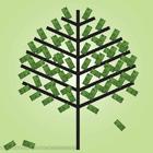 Money Spruce