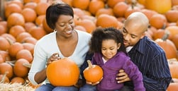 How to Enjoy Fall Festivities Without Breaking the Bank