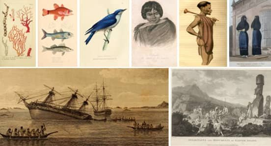 Images from Works Found in the Beagle Library