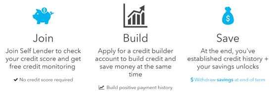 Screenshot from the Self Lender Homepage