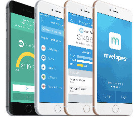Image of the Mvelopes App