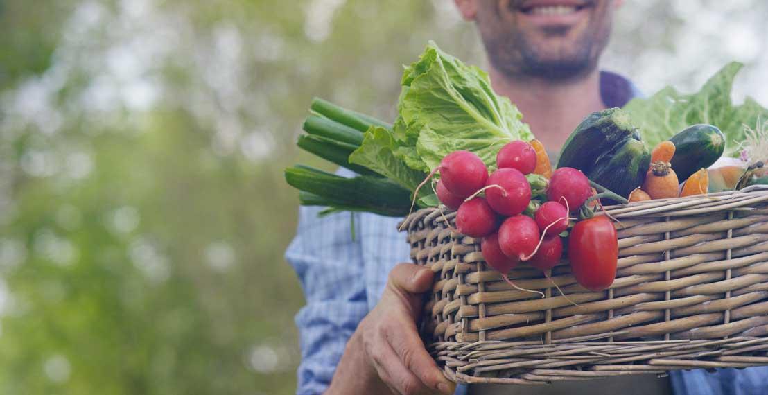 Organic Farmer Holding Vegetables