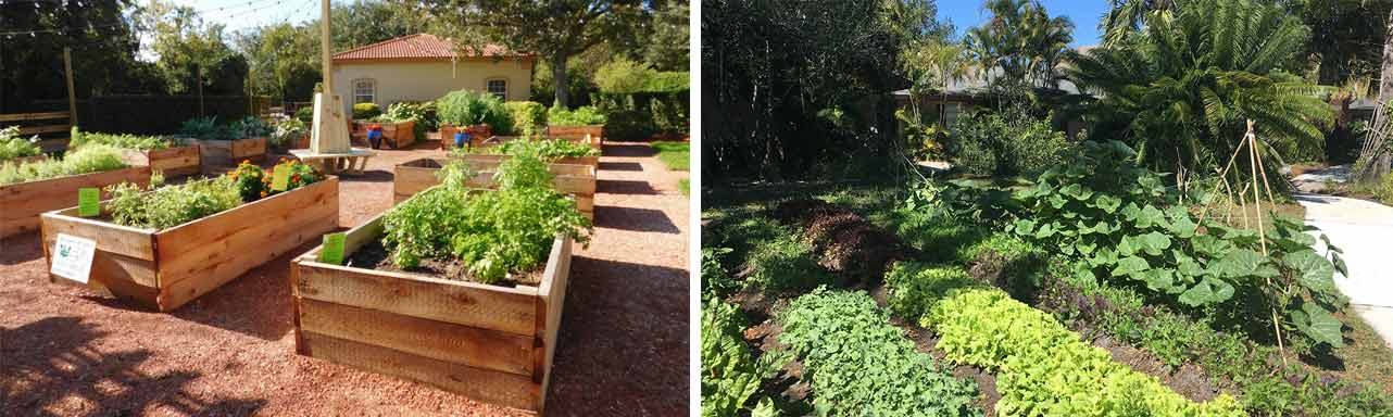 Collage of photos of Edible Landscapes and a yard farm
