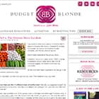 BCBudgetBlonde