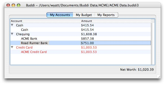 buddi personal budget software simplifies money management
