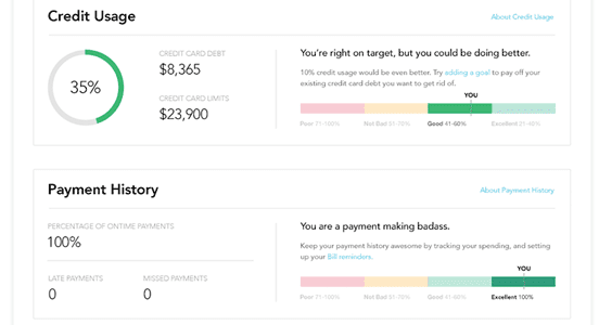 Screenshot of Credit Score Page