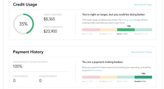 Screenshot of Credit Score Page